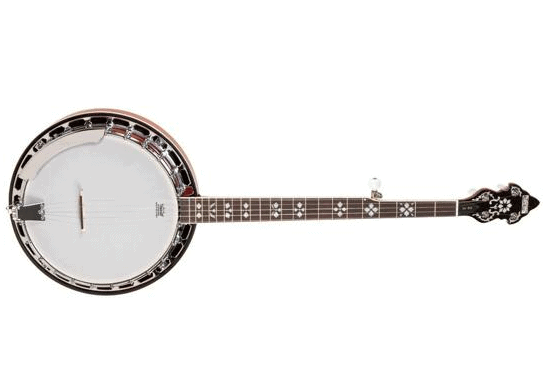 Recording king rk-r20 Banjo