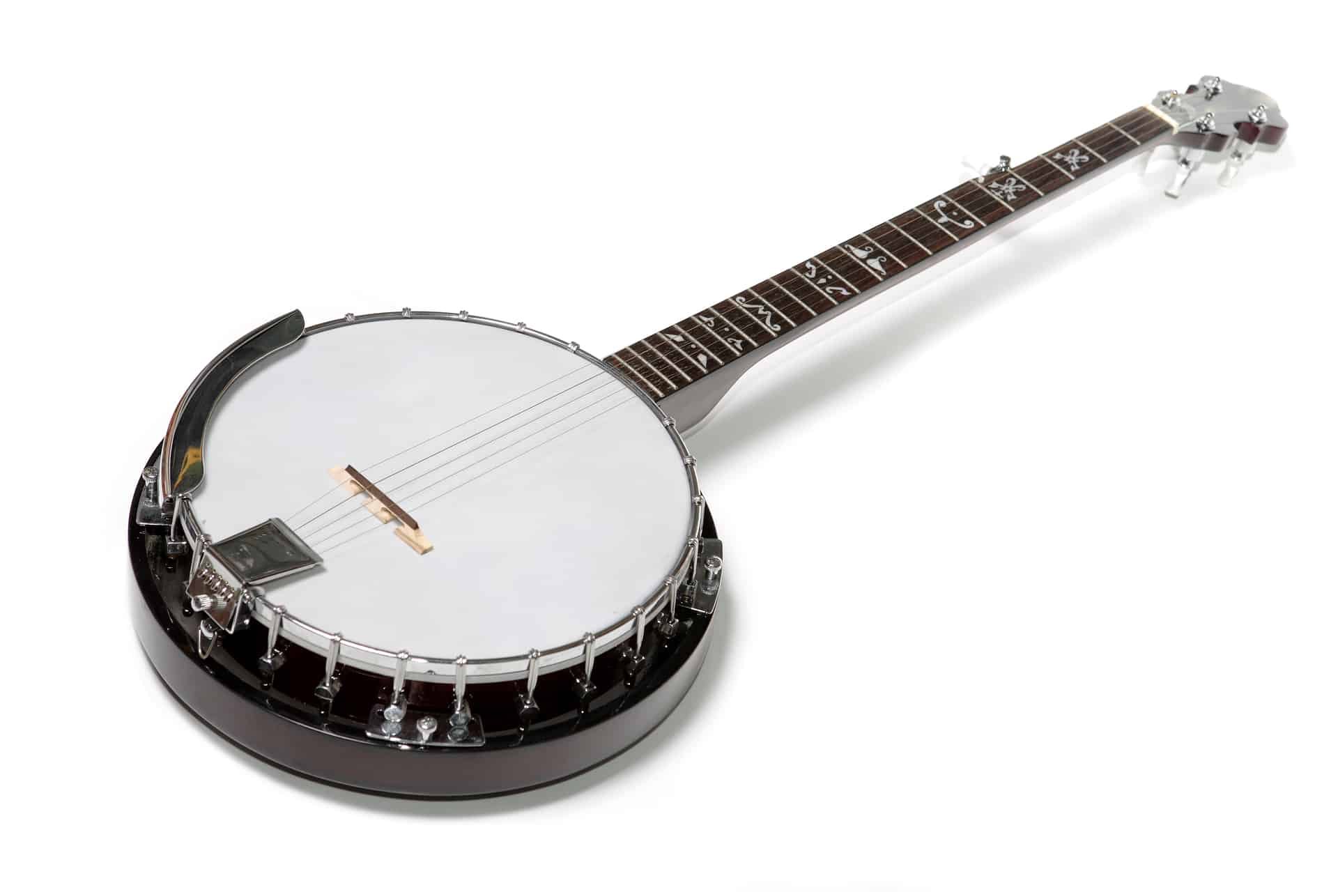 Best Beginner Banjo | Buying Guides & Reviews
