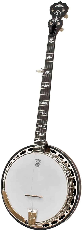 Deering Sierra 5 String Banjo Review and Guide